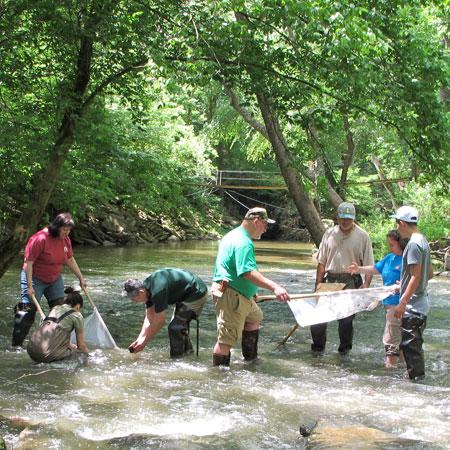 Seneca Creek macro invertebrate sampling for Save Our Streams